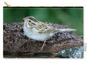 Clay-colored Sparrow Spizella Pallida Carry-all Pouch