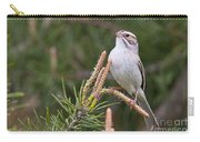 Clay-coloured Sparrow Pictures 35 Carry-all Pouch