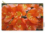 Music Please Clivia Carry-all Pouch