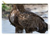 Close-up Of A Tawny Eagle Aquila Rapax Carry-all Pouch