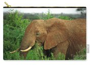 Close Up Of African Elephant Carry-all Pouch
