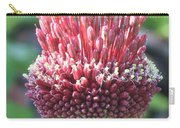 Close Up Of An Ornamental Onion Or Drumstick Allium  Carry-all Pouch