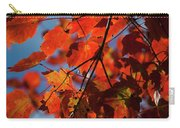 Close Up Of Bright Red Leaves With Blue Carry-all Pouch