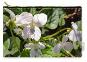 Close-up Of White Violets  Carry-all Pouch