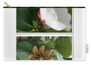 Clusia Rosea - Clusia Major - Autograph Tree - Maui Hawaii Carry-all Pouch by Sharon Mau