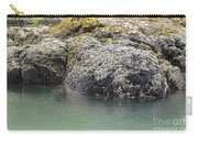 Coast Ecosystems Carry-all Pouch