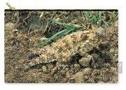 Coast Horned Lizard Carry-all Pouch
