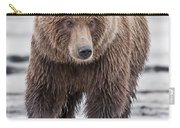 Coastal Brown Bear A Walk On The Beach Carry-all Pouch