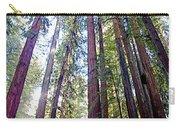 Coastal Redwoods Reach For The Sky In Armstrong Redwoods State Preserve Near Guerneville-ca Carry-all Pouch