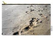 Coastal Walks Carry-all Pouch