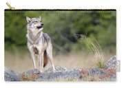 Coastal Wolf Carry-all Pouch