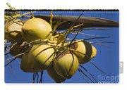 Coconut 1 Carry-all Pouch