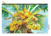 Coconut Series II Carry-all Pouch