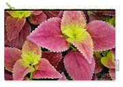 Coleus Colorfulius Carry-all Pouch