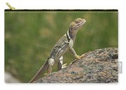 Collared Lizard Carry-all Pouch