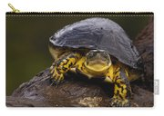 Colombian Wood Turtle Amazon Ecuador Carry-all Pouch