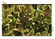 Color Engraving 1 Carry-all Pouch