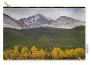 Colorado's Playground Carry-all Pouch