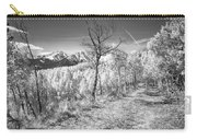 Colorado Backcountry Autumn View Bw Carry-all Pouch by James BO  Insogna