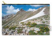 Colorado Elkhead Pass Carry-all Pouch