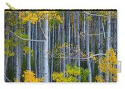 Colorado Fall Color Carry-all Pouch