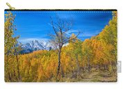 Colorado Fall Foliage Back Country View Carry-all Pouch