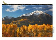 Colorado Gold Carry-all Pouch by Darren  White