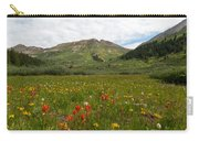 Colorado Meadow And Mountain Landscape Carry-all Pouch
