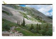 Colorado Mountain Landscape Carry-all Pouch