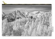 Colorado Rocky Mountain Autumn Beauty Bw Carry-all Pouch