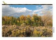 Colorado Urban Autumn Landscape Carry-all Pouch