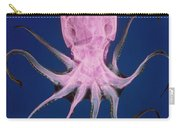 Colored X-ray Of An Unidentified Octopus Carry-all Pouch