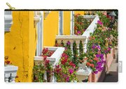 Colorful Balconies Carry-all Pouch