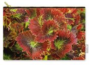 Colorful Coleus Carry-all Pouch