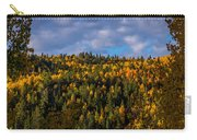 Colorful Colorado 2014 Carry-all Pouch