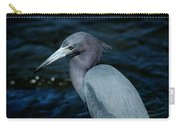 Colorful Egret Of Sanibel Carry-all Pouch