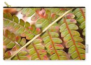 Colorful Fern Square Carry-all Pouch