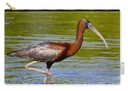 Colorful Glossy Ibis Carry-all Pouch
