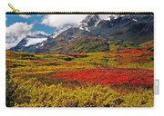 Colorful Land - Alaska Carry-all Pouch