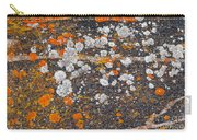 Colorful Moss Spots On A Gneiss Rock Carry-all Pouch