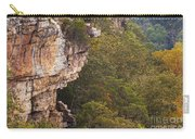 Colorful Overlook Carry-all Pouch