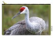 Colorful Sandhill Carry-all Pouch