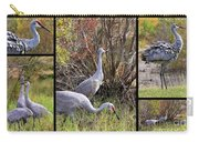 Colorful Sandhill Crane Collage Carry-all Pouch