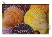 Colorful Shells Carry-all Pouch