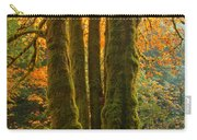 Colors In The Rainforest Carry-all Pouch by Adam Jewell