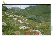 Colors Of The Rainbow - Colorado Mountain Summer Carry-all Pouch