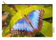 Common Blue Morpho Carry-all Pouch