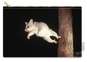 Common Brush-tailed Possum Carry-all Pouch