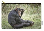 Common Chimpanzee  Pan Troglodytes Carry-all Pouch