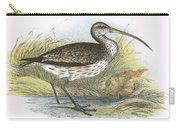 Common Curlew Carry-all Pouch